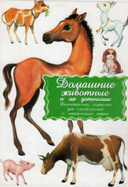 Дидактические материалы Домашние животные