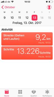 Wow, 9,2 km! Glücklicherweise taten mir meine Füße danach nicht weh. Aber leider mein Rücken. Merke: nächstes Jahr häufiger sitzen und mehr Wasser einpacken!