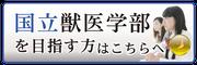 医歯薬専門予備校インフィア(コース紹介)