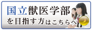 入試情報(国公立獣医)インフィア