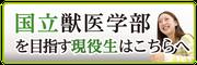 個別指導インフィア(コース紹介)