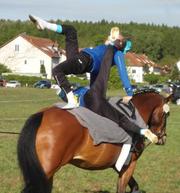 Turnier Schäferhof