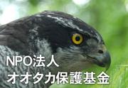 NPO法人オオタカ保護基金