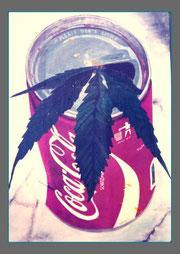 coca cola and leave