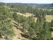 Campground von Crazy Horse
