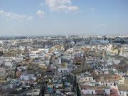 Blick von der Giralda auf Sevilla