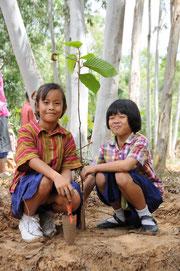 植林後も苗木の世話を続けます