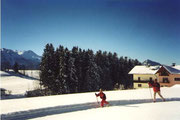 Langlaufloipe Radochsberg 1 und Verbindungsloipe zu Radochsperg 2 direkt am Biohof Haus Wieser, Abtenau, Salzburg Land. Im Hintergrund das Tennengebirge