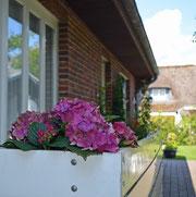 Haus Dagmar in List auf Sylt appartementvermietung List Haus Dagmar