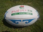 第7回タグ茨城県大会