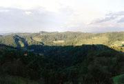 Südsteirische Hügellandschaft