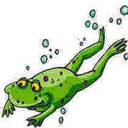 la rana y el pozo