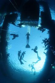 free diving nice