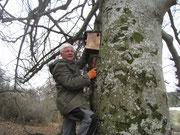 Anbringen eines Baumläufer-Kastens