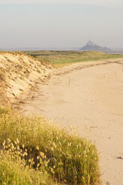 Dune sableuse du bec d'andaine