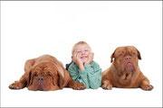 Hundesprache verstehen