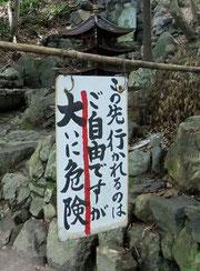 京都 醍醐