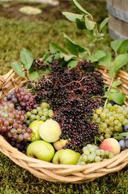 Obst vom eigenen Hof