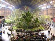 Stazione di ATOCHA - Madrid