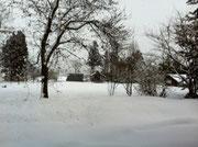 雪景色の鳴子!