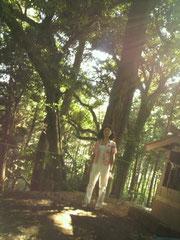 阿夫利神社奥の院