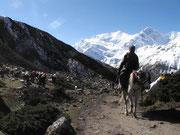 Trekking Mustang Nepal