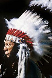 Picasso met Indianen hoofdtooi van David Douglas Duncan