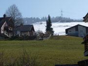 ländliche Idylle, Sonne, etwas Schnee, ein toller Fasnachtsumzug - was will man mehr?