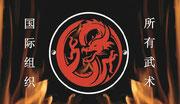 Kampfkunstschule-Dragon
