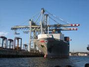 weltweite Seefrachttransporte