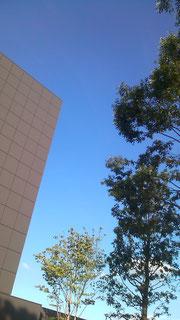 東急プラザ屋上庭園の四角い空