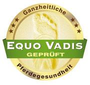 Equo Vadis