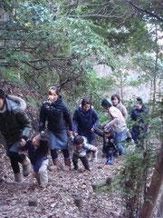 公園の裏山「たぬき山」を登る♪
