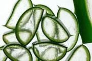 Les crèmes solaires avec 40% d'Aloe véra for ever