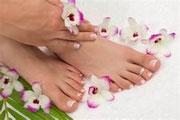 Les produits les plus demandés d'Aloé Vera Santé:  Les soins pour de beaux pieds  Les soins du visages Aloé véra  La pharmacie naturelle à l'Aloé Vera