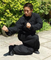 Master Chen Ziqiang Generacion 20 Style Chen