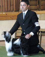 Tripitaka Oriental Lilly_Tibet Terrier of Dog´s Wisdom_Peter Künzel_Oelde
