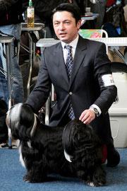 Max_Tibet Terrier Rüde_Peter Künzel Oelde