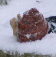 frostfeste Schnecke Keramik