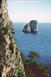 Capri, Faraglioni-Felsen