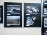 """mein Beitrag zum Fotowettbewerb 2012 - Thema """"Vom Winde verweht"""" im Naturkundemuseum Erfurt"""