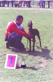 Maurizio D'Amico e Dominique di Monte Romano, Speranza AIAD 2004