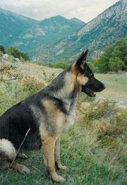 Greta in Abruzzo