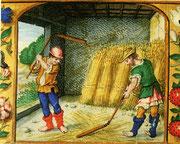 ¤ battage du blé avec un fléau - 1525 - Maastricht