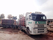 Holztransporte LKW Volvo FH-500 6x4