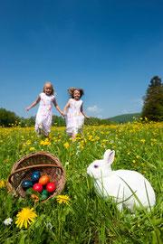 Osterhase Feiertage Kurzurlaub Halbpension