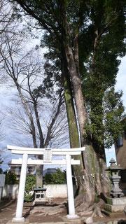 上野国総社元地・宮鍋神社