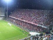 Salernitana - Lazio