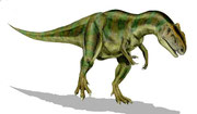 Bild eines Allosaurus
