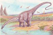 Bild eines Apatosaurus